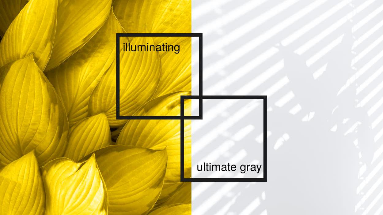 decoración de tu casa con los Colores Pantone 2021