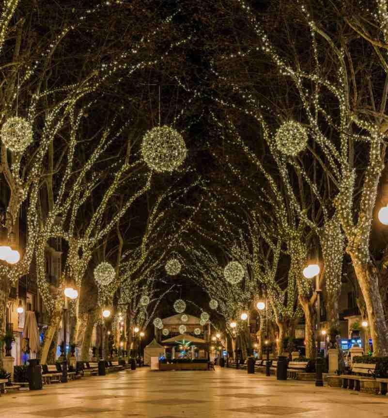 Planes para navidad Mallorca