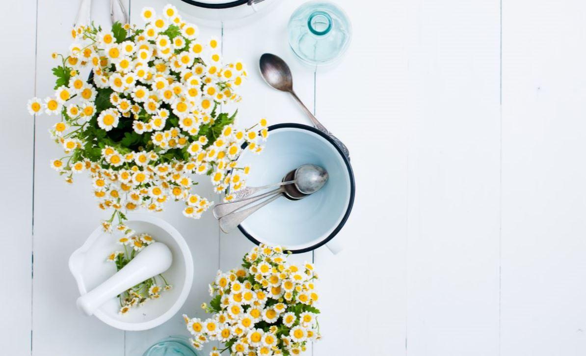 Flores decorativas para la cocina