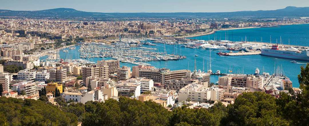 Four top things to do in Palma in winter