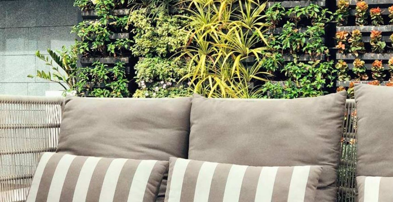 com crear un jardí vertical
