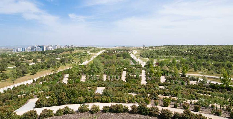 Parks in Valdebebas