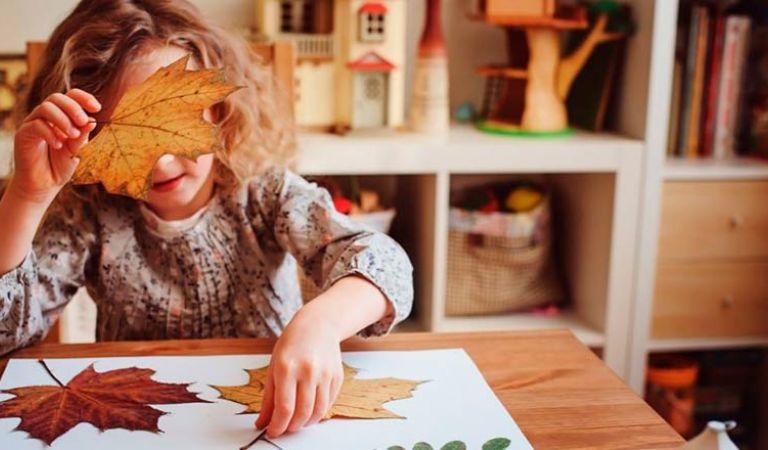 Idees DIY per a la decoració de tardor de casa teva